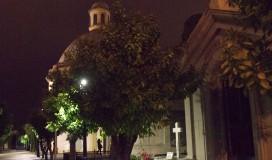 foto noches de verano II